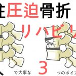 脊柱圧迫骨折のリハビリで大事な3つのポイント