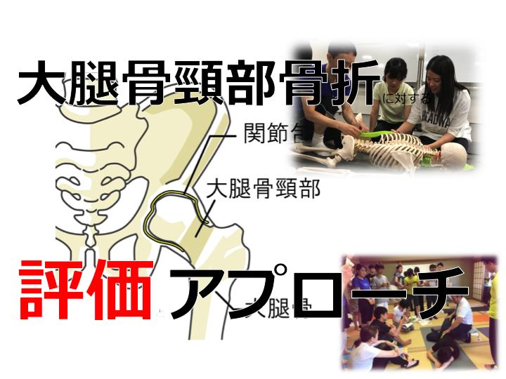 【触診から紐解く】大腿骨頸部骨折に対するリハビリテーション 評価とアプローチ法