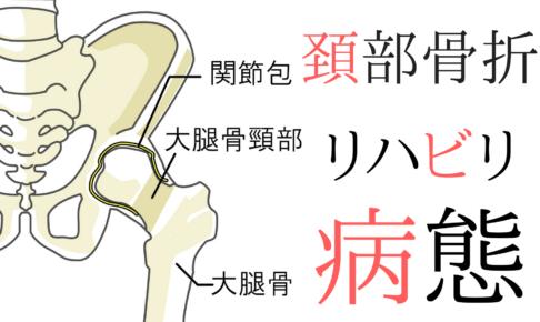 【整形疾患シリーズ】大腿骨頸部骨折のリハビリって?評価とアプローチ ~病態編~