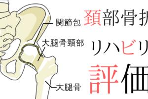 【整形外科疾患シリーズ】大腿骨頸部骨折のリハビリって?評価とアプローチ ~評価編~