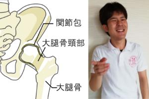 意外と知られていない大腿骨頸部骨折のROMexを考えてみた!