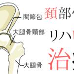 【整形外科疾患シリーズ】大腿骨頸部骨折のリハビリって?評価とアプローチ~治療編~