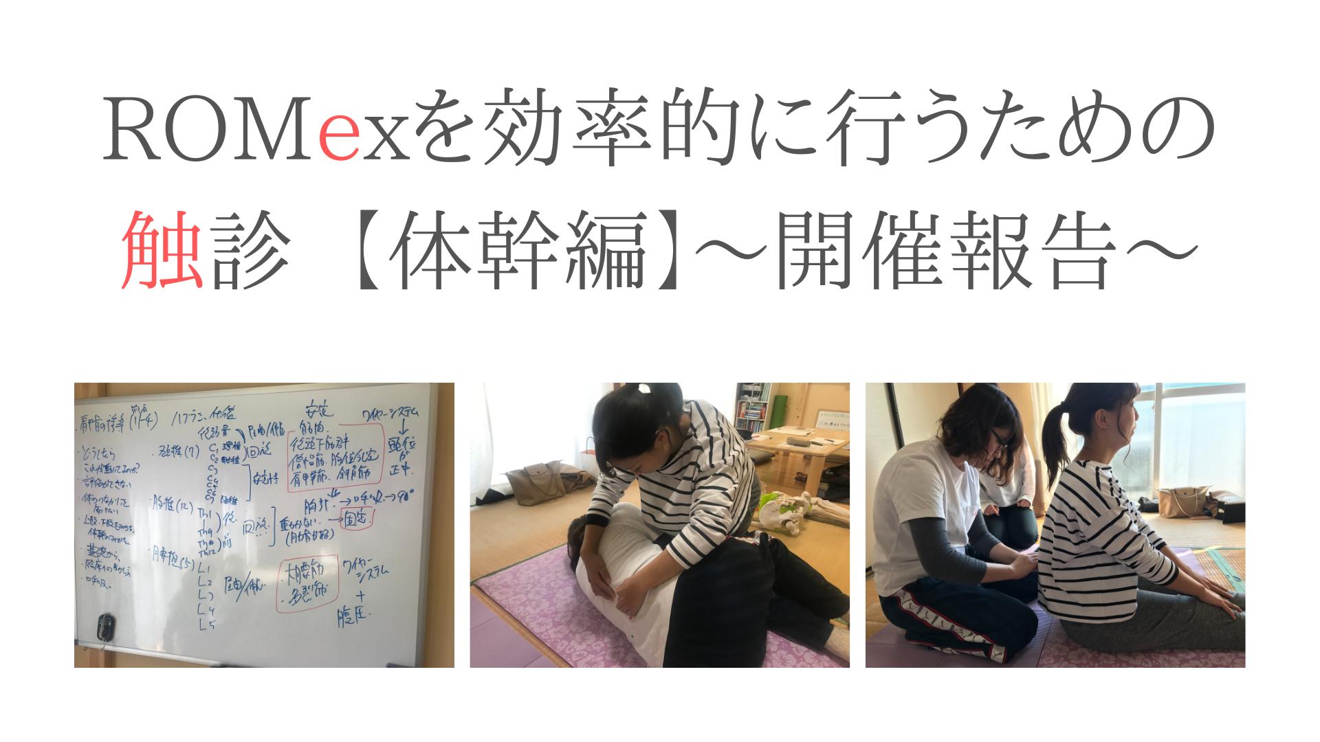 ROMexを効率的に行うための触診【体幹編】〜開催報告〜